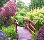 Footbridge in Japanese Garden, Waterfront Walkway