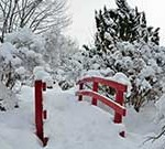 Small bridge in Japanese Garden, winter
