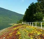 Waterfront Walkway with spring flowers